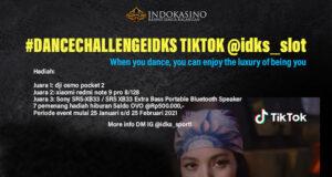 TIKTOK CHALLENGE IDKS