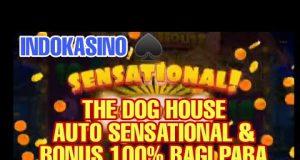 MAIN THE DOG HOUSE MENANG BANYAK AUTO JACKPOT