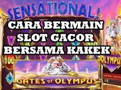 Cara Bermain Slot Gate of Olympus